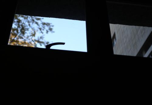 window02.jpg